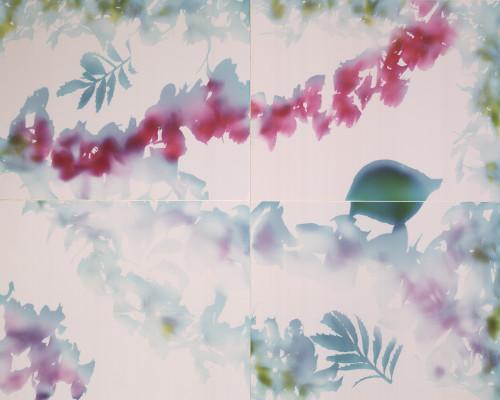 "Waterflower Mosaic #8 - collage of 4 11""x14"" unique Cibachrome prints"