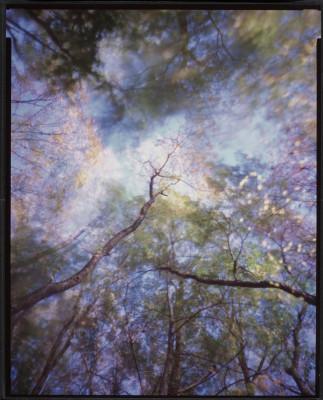 """Wald #117 - unique pinhole photograph on 10"""" x 8"""" Ilfochrome"""