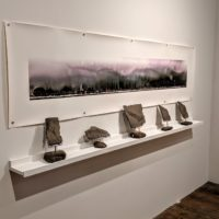 Anthropocene and Borderlands at Foley Gallery